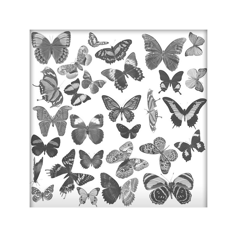 Brush Pack Butterfly 01 Scrap'n'Design Psd Brushes 3,99 €